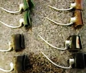 combattimenti-tra-galli1-300x255