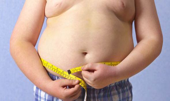 Obese-child-540639