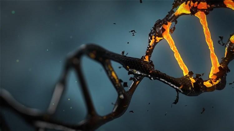 genetics-ocd-neurosciencenews-public
